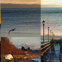 White Rock, BC - Custom collage on canvas from client's own photos