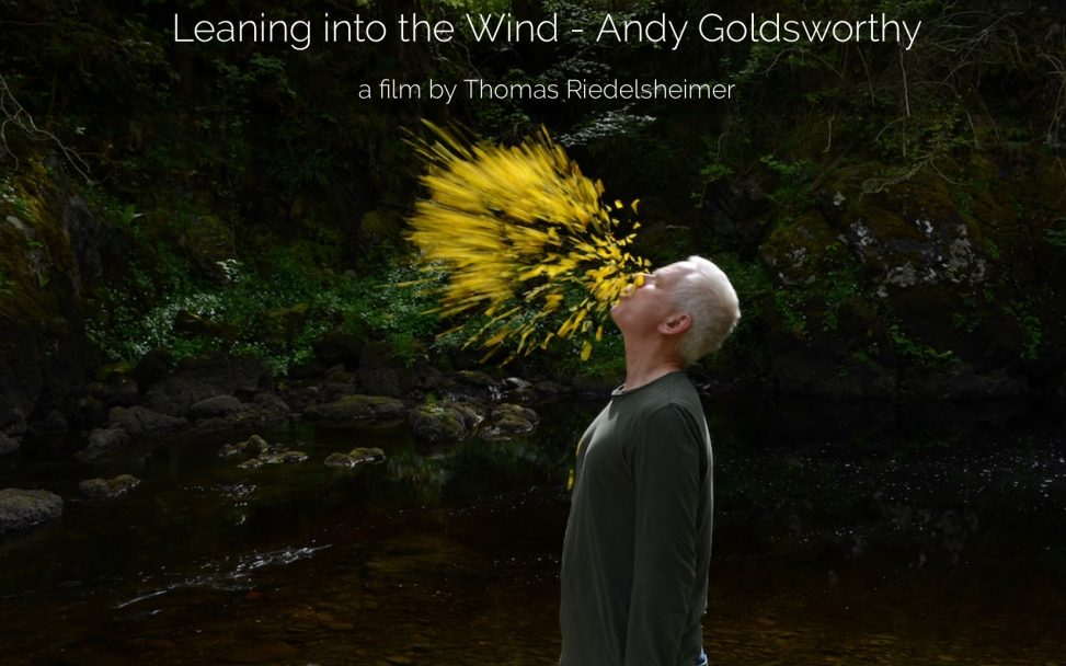 Artist Andy Goldsworthy blows yellow petals into the air